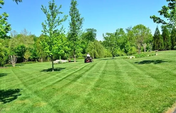 How you can Mow The actual Yard