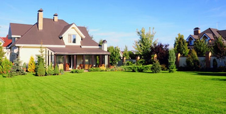 Lawn Fertilizer: Choosing as well as Make use of the Correct Kind for the Yard