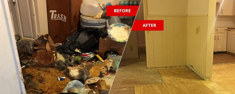 Decomposed Body Cleanup Expert Walks You Through Every Step of the Process